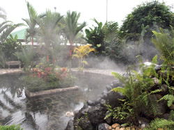 Baldi Hot Springs, La Fortuna, Costa Rica